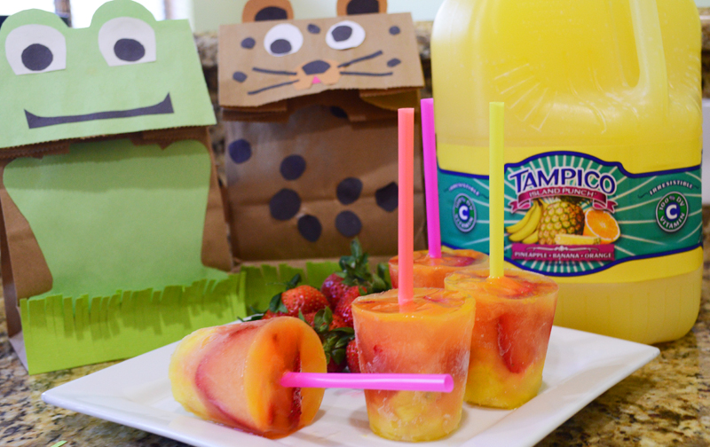 DIY Lunch Sack and Tampico Freeze Pop Fun - The Kreative Life